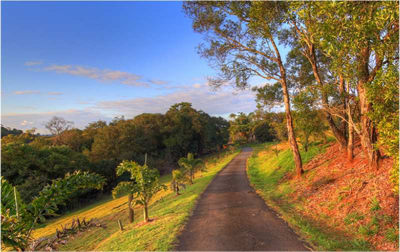 Driveway down to Maleny Tropical Retreat